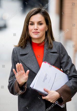 Queen Letizia attends a Meeting with the Board of FEDER, Madrid