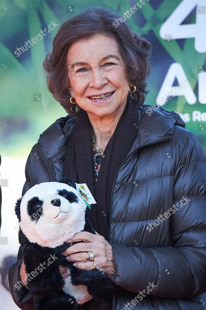 Queen Sofia visits the giant panda enclosure at Madrid Zoo